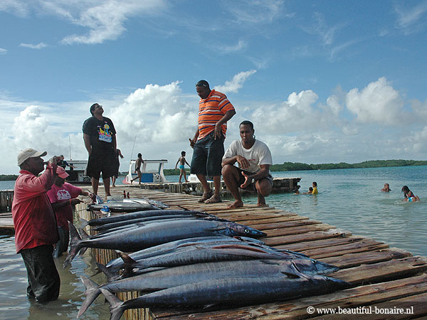 vissers_op_bonaire